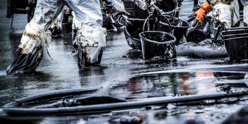 MAURICE : 2 mois après la catastrophe, la BAD soutient le nettoyage de la marée noire©Tigergallery/Shutterstock