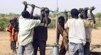 SÉNÉGAL : 250 jeunes seront formés à l'entretien des installations d'eau d'ici 5 ans©Gilles Paire/Shutterstock