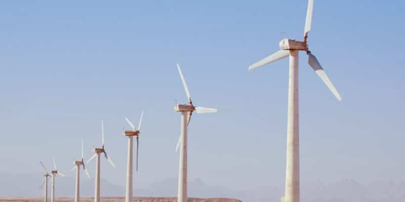 EGYPT: a call for tenders for the operation of the Gabel El-Zeit wind farm (220 MW)©Vasilii L/Shutterstock