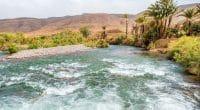 MAROC : la province de Chichaoua élabore son plan de gestion durable des eaux ©Elzbieta Sekowska/Shutterstock