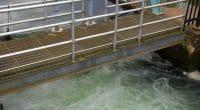 MOZAMBIQUE : le Fipag relance l'usine d'eau potable de Chilembene après son extension©Bradley D. Saum/Shutterstock