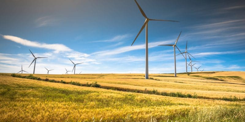 SOUTH AFRICA: BioTherm Energy connects its Excelsior wind farm (33 MW) to the grid©Lukasz Janyst/Shutterstock