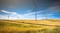 AFRIQUE DU SUD : BioTherm Energy connecte son parc éolien Excelsior (33 MW) au réseau ©Lukasz Janyst/Shutterstock