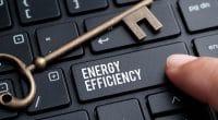 COTE D'IVOIRE : la GIZ et CGECI prônent l'efficacité énergétique dans les entreprises©kenary820/Shutterstock