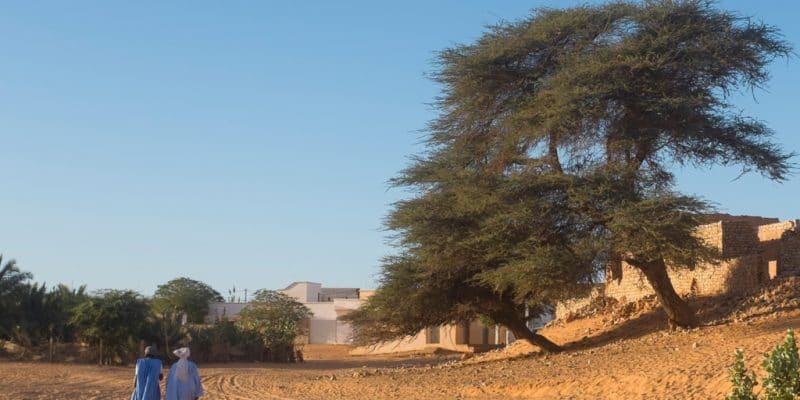 MAURITANIA: ADF Funds Climate Change Resilience with $2.1 million©DorSteffen/Shutterstock