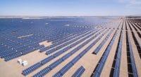 ÉGYPTE : la Berd prête 54 M$ pour 200 MWc d'énergie solaire à Kom Ombo©lightrain/Shutterstock