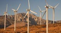 MAURITANIE : Elecnor se retire du projet éolien de Boulenouar, au profit de Siemens©Dejan Stanisavljevic/Shutterstock