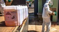 ÉGYPTE : Geocycle va éliminer 34,9 tonnes de pesticides périmés dans trois ports©Alf Ribeiro/Shutterstock