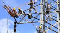 MALI: Kalpa Taru will electrify 100 villages via a 225 kV high-voltage line© NewSs/Shutterstock