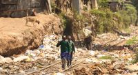 KENYA : NMS lance une initiative pour débarrasser Nairobi des déchets©Luvin Yash/Shutterstock