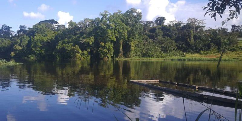 CAMEROUN-CONGO: des études commenceront en2021 pour produire 600MW sur la rivière Dja©Sergey Uryadnikov/Shutterstock