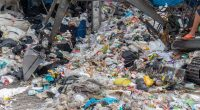 NIGERIA: the FEC approves a new law on plastic waste management©moxumbic/Shutterstock