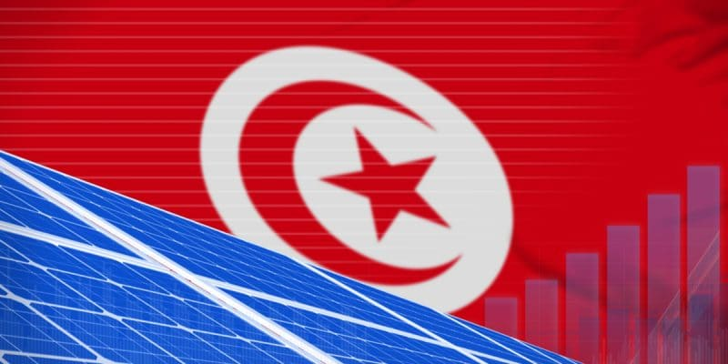 TUNISIA: the government launches a 4th call for tenders for 60 MWp of solar energy ©Anton_Medvedev/Shutterstock