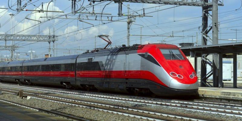 ÉGYPTE : un train électrique reliera Le Caire aux nouvelles villes d'ici octobre 2021 ©kaband/Shutterstock