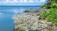 KENYA : Nakuru veut appliquer «rigoureusement» le principe pollueur-payeur©cribe/Shutterstock