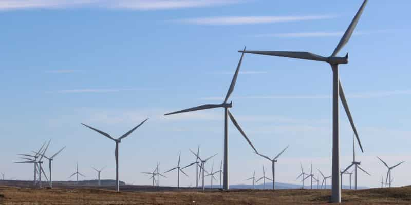 EGYPT: IPPs develop a 2,000 MW wind power complex in the Gulf of Suez ©David Falconer/Shutterstock