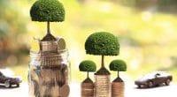 ÉGYPTE: le gouvernement lance des obligations vertes pour financer ses projets verts©Monthira/Shutterstock
