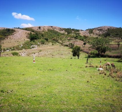 ETHIOPIA: 7 companies in the running for drilling on the Corbetti geothermal site©InfraCo Africa