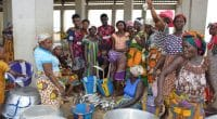 COTE D'IVOIRE : les mareyeuses de Sassandra, sensibilisées pour une après pêche durable©FAO-Côte d'Ivoire/Shutterstock
