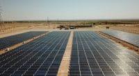 TCHAD : à Sarh, une centrale solaire de 30 MWc alimentera les populations et la NSTT©Sebastian Noethlichs/Shutterstock