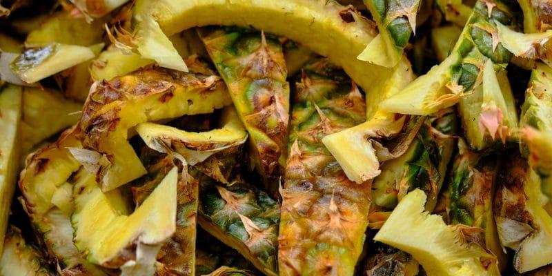 BÉNIN : Enabel va financer cinq projets de valorisation de déchets d'ananas©meandering images/Shutterstock