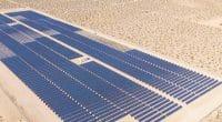 TCHAD : Merl Solar va fournir 100 MWc à partir de deux centrales solaires à Gaoui©Flystock/Shutterstock