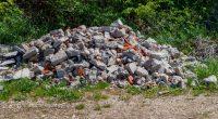 TUNISIE : une application mobile améliore la collecte des déchets de démolition:©Bojan Zivkovic/Shutterstock