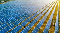 BENIN: Eiffage RMT obtains land for the Illoulofin solar power station (25 MWp)©Jenson/Shutterstock