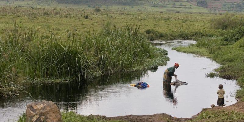 AFRIQUE : le FVC approuve 60 M$ pour 4 projets de résilience au changement climatique©giulio napolitano/Shutterstock
