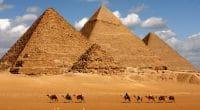 ÉGYPTE : l'État remplace les animaux par les véhicules électriques dans le tourisme©sculpies/Shutterstock