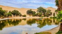 TUNISIE : WWF lance une étude sur l'assèchement de la lagune Sebkhet Sidi Ali© Don Mammoser/Shutterstock: