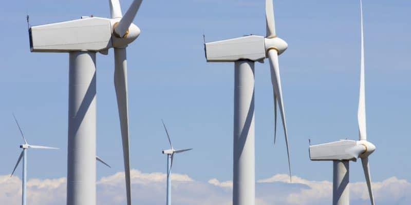 AFRIQUE DU SUD : Enel Green Power inaugure son parc éolien de Nxuba de 140 MW ©pedrosala/Shutterstock
