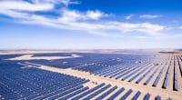 ÉGYPTE : le gouvernement honoré d'un prix pour son projet solaire de Benban (1,65 GWc)© zhangyang13576997233/Shutterstock