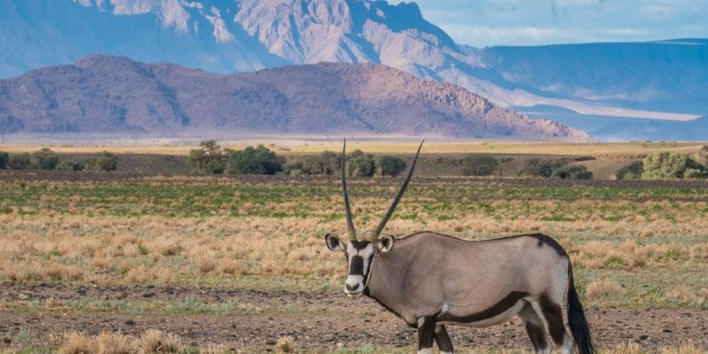 NAMIBIA: $1.4m EIF and GCF for climate resilience in Keetmanshoop©LouieLea/Shutterstock