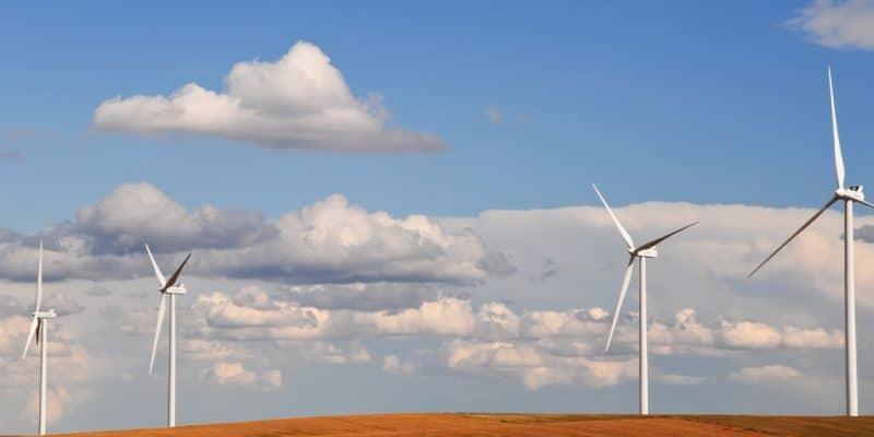 AFRIQUE DU SUD : Lekela ajoute 140 MW au réseau à partir du parc éolien de Kangnas ©rCarner/Shutterstock