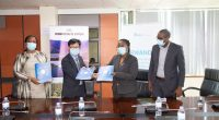 RWANDA : East Africa Bamboo va créer 2300 hectares de bambou dans trois districts©RDB