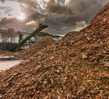 SOUTH AFRICA: Coega plant to resume production of biomass pellets©Juan Enrique del Barrio/Shutterstock