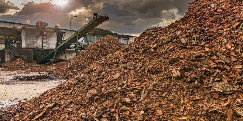 SOUTH AFRICA: Coega plant to resume production of biomass pellets©Juan Enrique del Barrio/Shutterstock