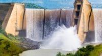 AFRIQUE : l'hydroélectrique sera au cœur d'une exposition en Ouganda, en avril 2021©Jurie Maree/Shutterstock