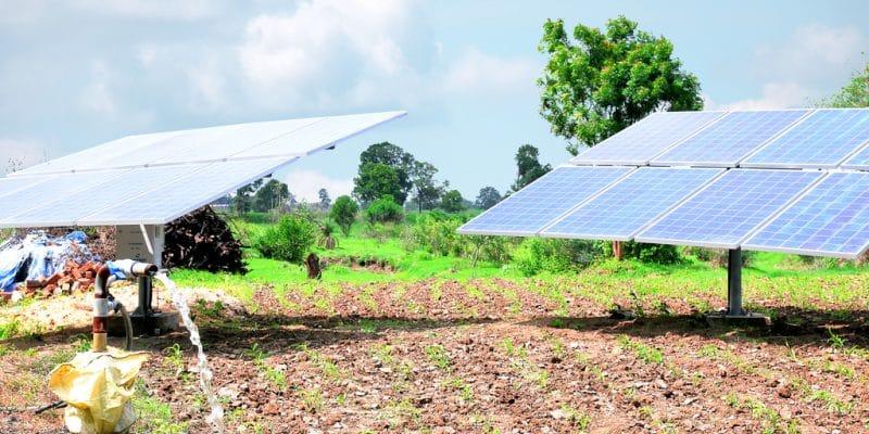 TOGO : «Bboxx EDF Togo» et SunCulture vont fournir des pompes à eau solaires ©Tofan Singh Chouhan/Shutterstock