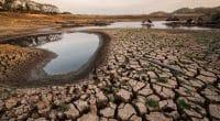 AFRIQUE DE L'EST : l'ARC propose une assurance contre les risques climatiques©yuthapong kaewboon/Shutterstock