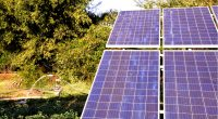 AFRICA: SunCulture raises $14 million to distribute its solar-powered water pumps ©Tofan Singh Chouhan/Shutterstock