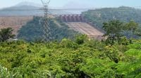 CAR-DRC: AfDB finances the rehabilitation of the Boali hydroelectric power plant©Nataly Reinch/Shutterstock