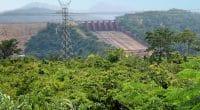 RCA-RDC : la BAD finance la réhabilitation de la centrale hydroélectrique de Boali©Nataly Reinch/Shutterstock