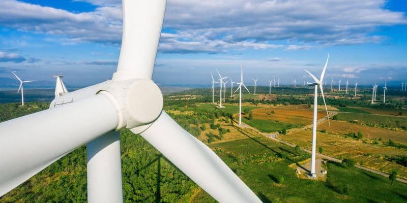 SOUTH AFRICA: BioTherm connects its Golden Valley wind farm (120 MW) to the grid ©Blue Planet Studio/Shutterstock