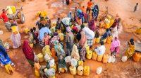 AFRIQUE DU NORD : les disponibilités en eau douce ont chuté de 30 % selon la FAO© hikrcn/Shutterstock