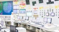ÉGYPTE : Siemens et Hassan Allam construiront un centre de contrôle d'énergie au nord©Dolgikh Pavel/Shutterstock