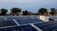 NIGERIA: Empower finances a solar system (700 kWp) for the Premium Poultry Farm©Sebastian Noethlichs/Shutterstock