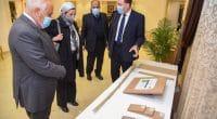 ÉGYPTE : le gouvernement va valoriser les déchets de palmiers dans la Nouvelle Vallée©AOI