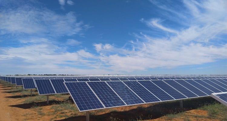 AFRIQUE DU SUD : la centrale solaire PV de De Wildt (50 MWc) entre en service©Reatile Group